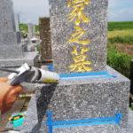神埼市 嘉村様家 墓石クリーニング
